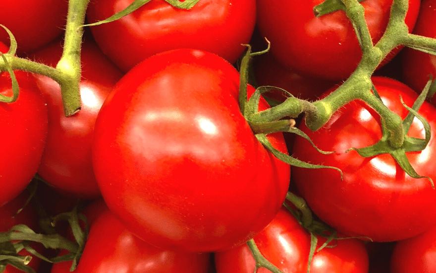 Tomaten Rost entfernen Hausmittel